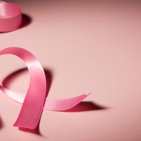 Estée Lauder Companies 2012 Breast Cancer Awareness CharityAuction