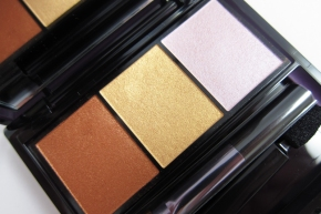 Shiseido Luminizing Satin Eye Color Trio In BR 214 Into TheWoods
