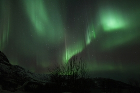 Chasing The Northern Lights In Tromsø