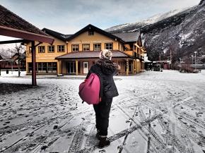 Norway In A Nutshell®: From Oslo ToBergen